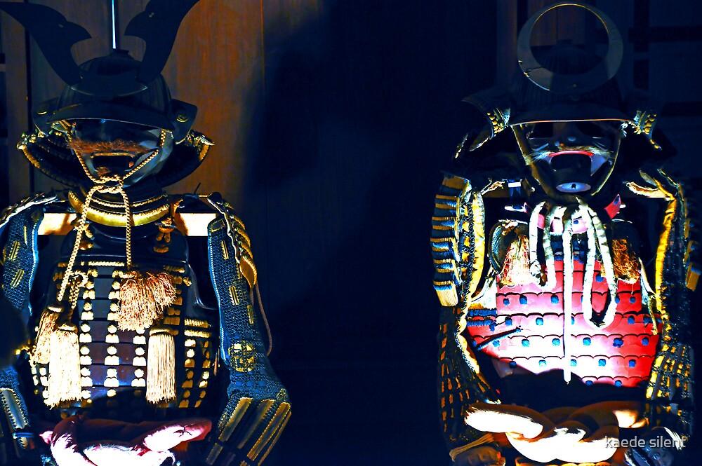 shogun2 by imagesbyhanson