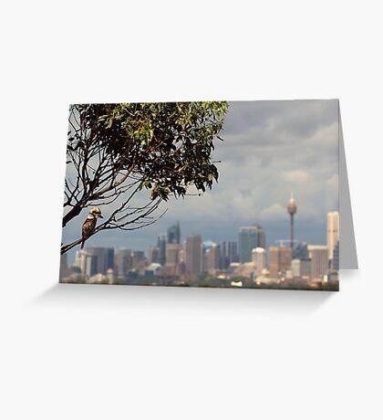 Kookaburra Skyline Greeting Card