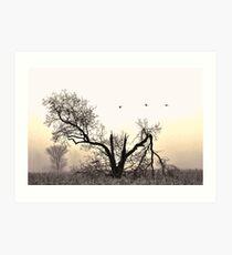 birdland.. Art Print