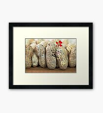 Nuts About You Framed Print