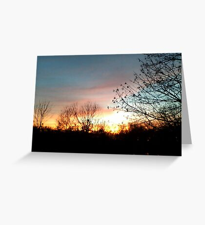 Nature framed beauty Greeting Card