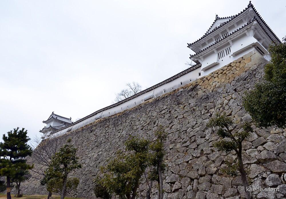 himeji castle by imagesbyhanson