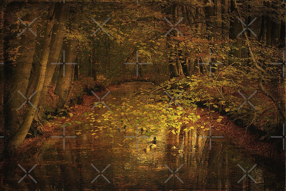 The stream by EbyArts