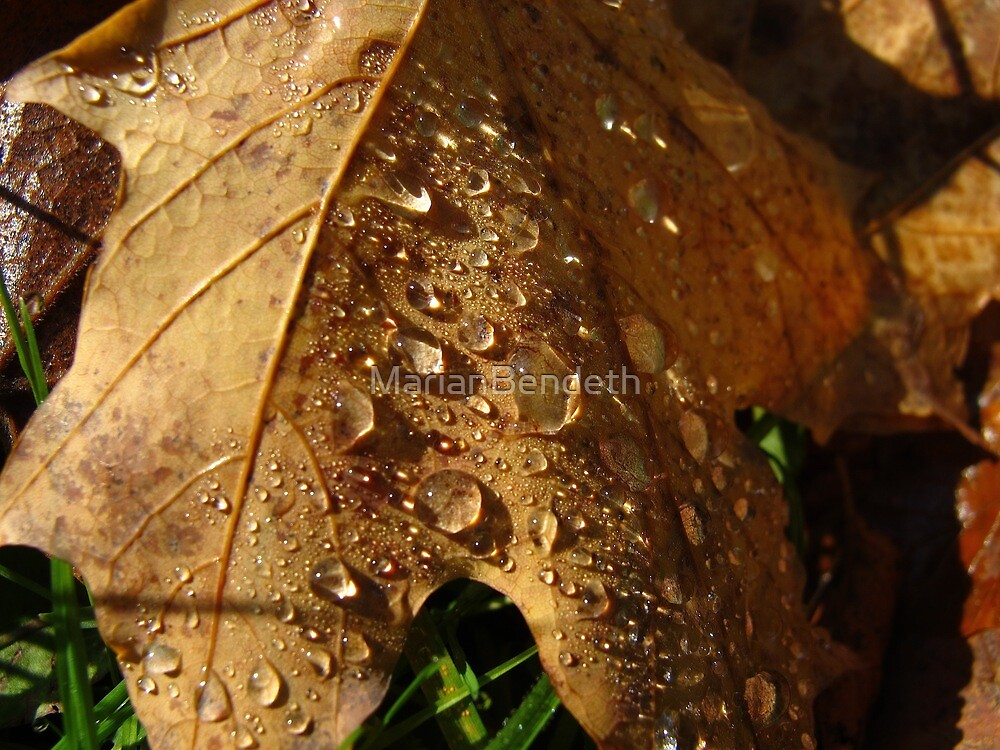 Glittering October by MarianBendeth
