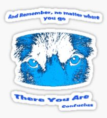 Inspirational Reflection Confucius Quote Sticker