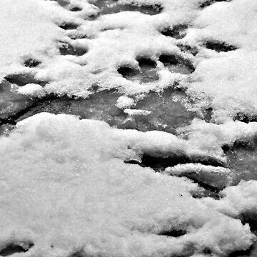 Snow by scream2