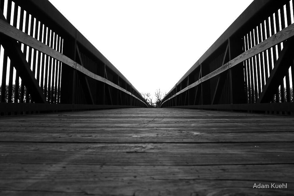 Plank Road by Adam Kuehl