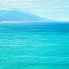 Blue Seas, Kaikoura by Dilshara Hill