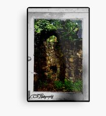 Looking Through the Window Metal Print