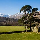 Rydal Head & Great Rigg by David Lewins
