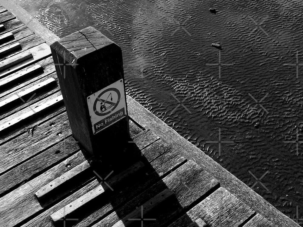 Piano in the sea. by Vlad Muntean