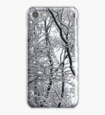 Snow laden winter trees iPhone Case/Skin