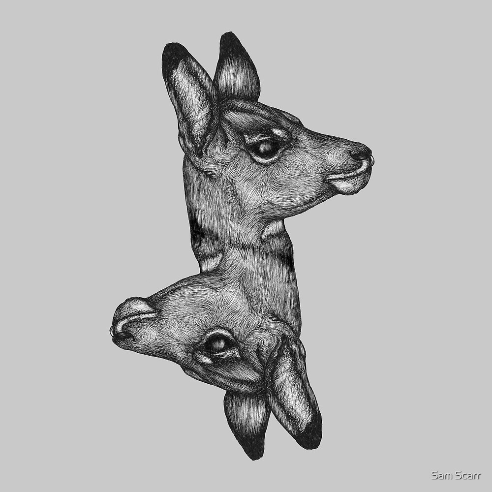 Antelope Heads by samclaire
