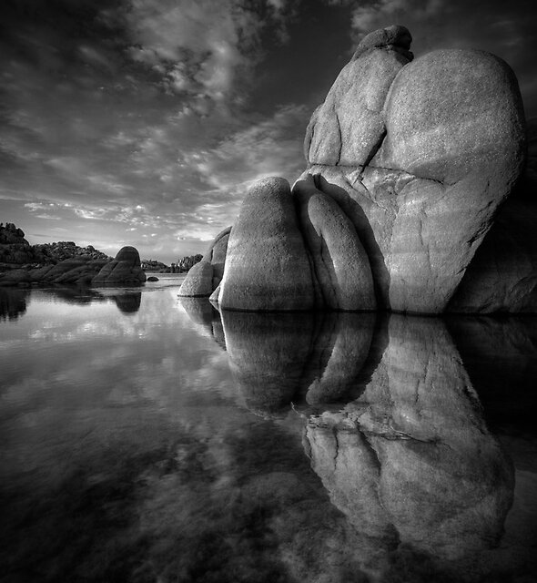 To The Point- Black and White by Bob Larson