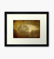 Sneak up Framed Print