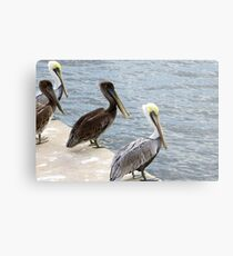 Take off on the count of three! Metal Print