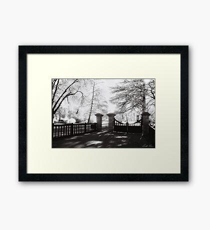 Benalla Botanical Gardens Framed Print
