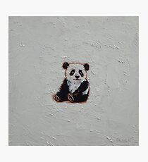 Tiny Panda Photographic Print