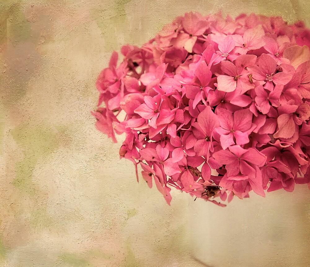 Pink! by Lyn Darlington
