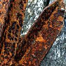 rust never sleeps by Mark Batten-O'Donohoe