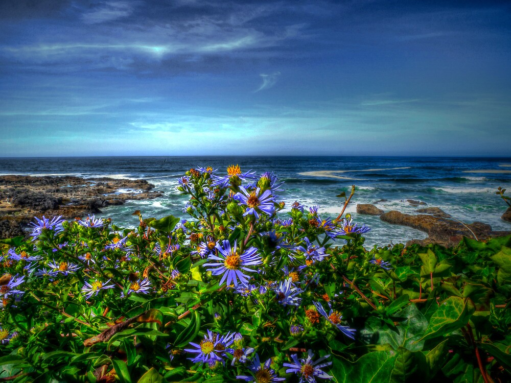 It's A Great Day by Charles & Patricia   Harkins ~ Picture Oregon