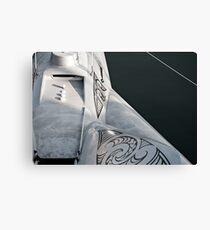 Earthrace Canvas Print