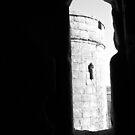 Through the Loophole by NowhereMan