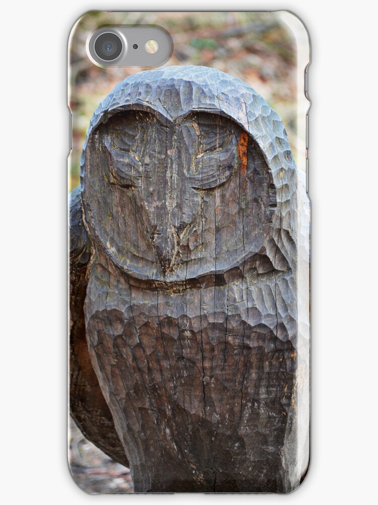 Lesser Spotted Wood Owl iPhone/iPod Case by Carol Bleasdale