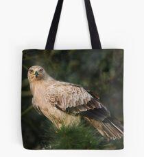 Tawny Eagle Tote Bag