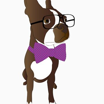 Hipster Boston Terrier by Inspyre