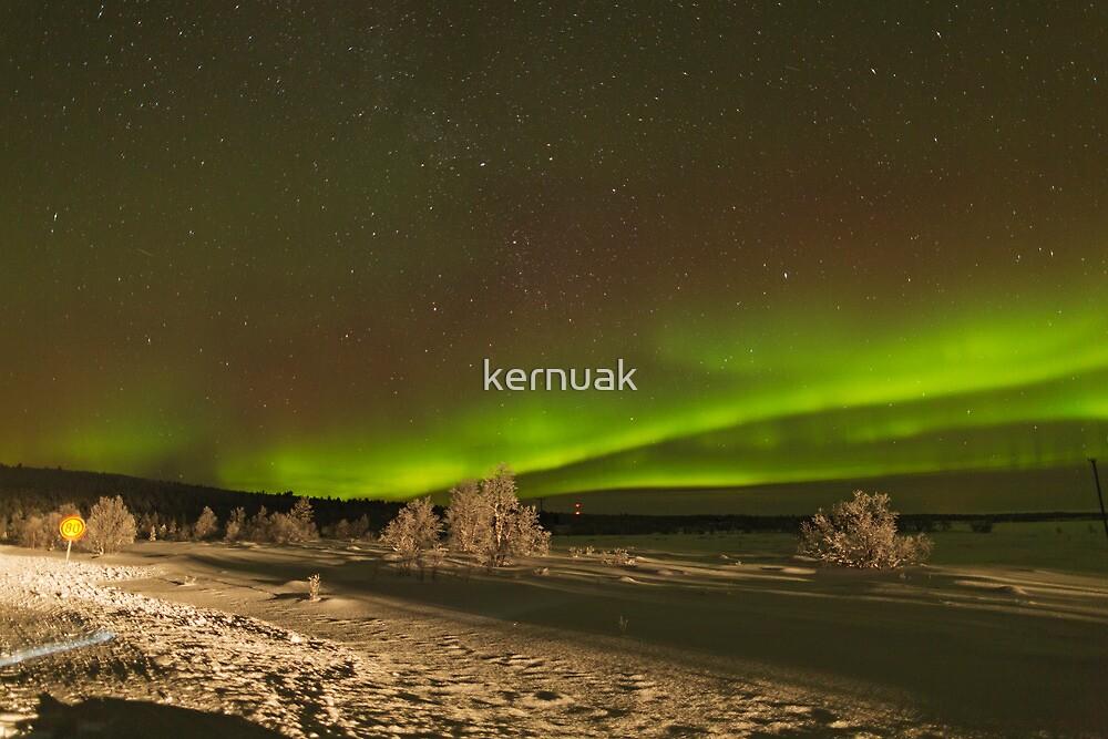 Aurora with Foreground by kernuak