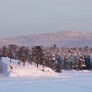 Lake Inari at Dawn. by kernuak
