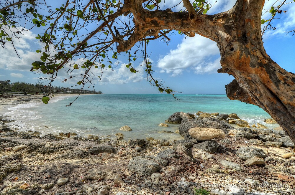 Ocean View at Caves Village in Nassau, The Bahamas by Jeremy Lavender Photography
