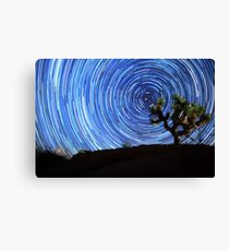 Stunning Circular Star Trails Above Joshua Tree Desert Canvas Print