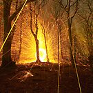 Fire orb in the forest by willgudgeon