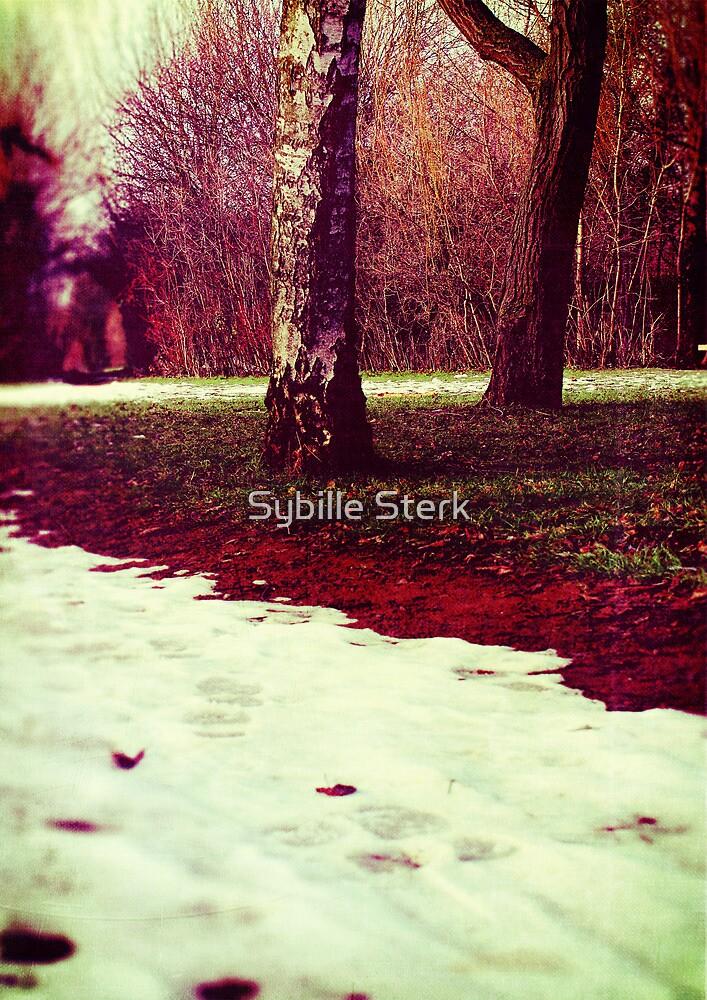Martian Winter II by Sybille Sterk