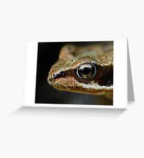 Froglet's Eye Greeting Card