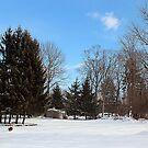 SNOWY DAYS by BOLLA67