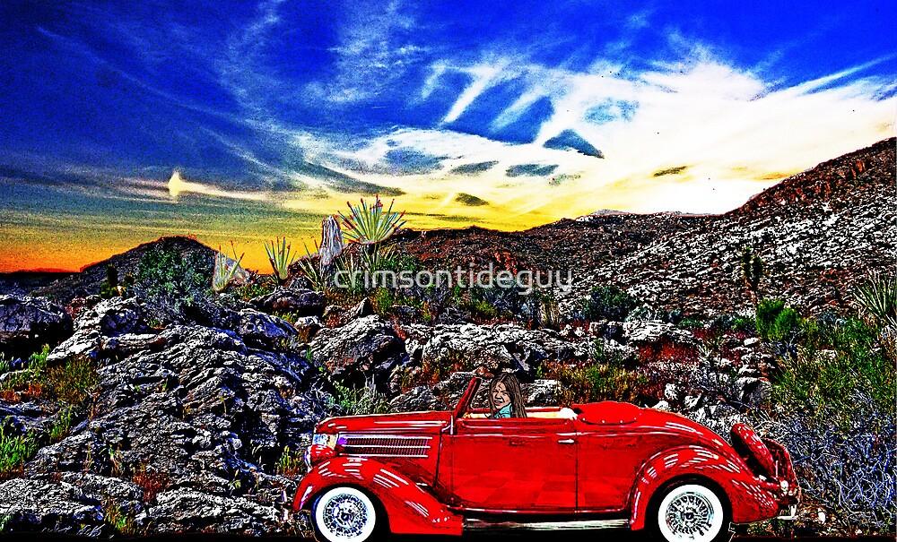 Desert Drive by Mike Pesseackey (crimsontideguy)