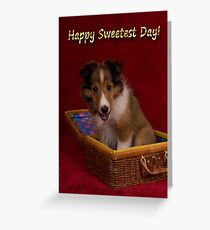 Sweetest Day Sheltie Puppy Greeting Card