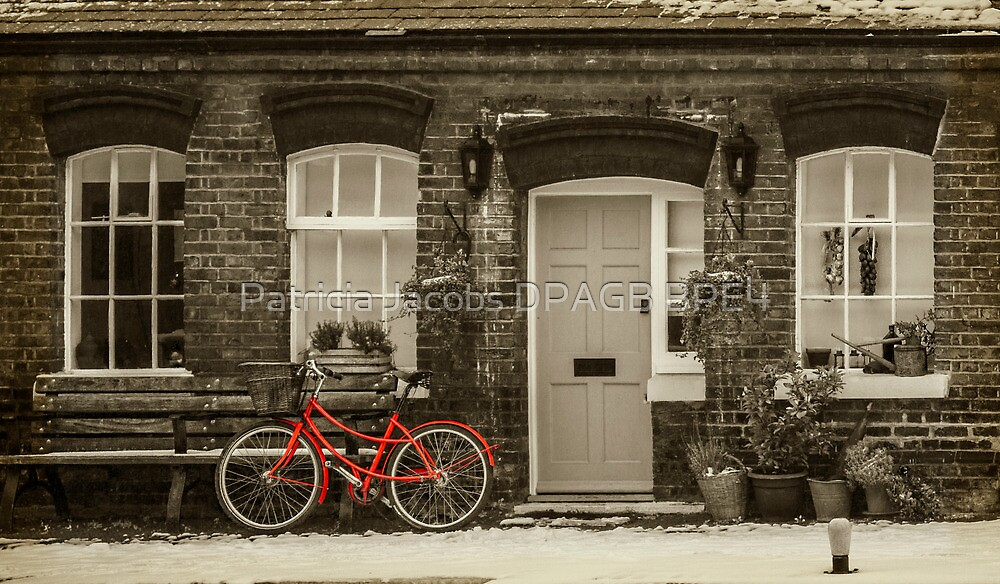 The Red Bicycle by Patricia Jacobs DPAGB BPE4
