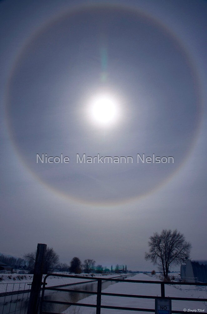 Sun Halo by Nicole  Markmann Nelson