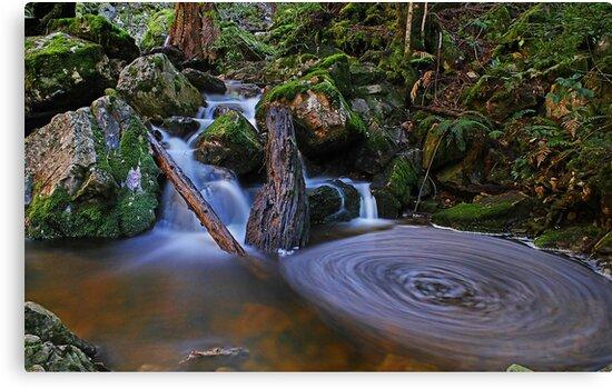 Upper Gads Creek by Damon Colbeck