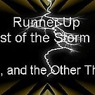 Runner Up Storm Winner banner by quiltmaker