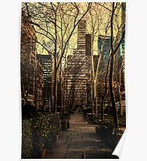 Bryant Park, New York City Poster