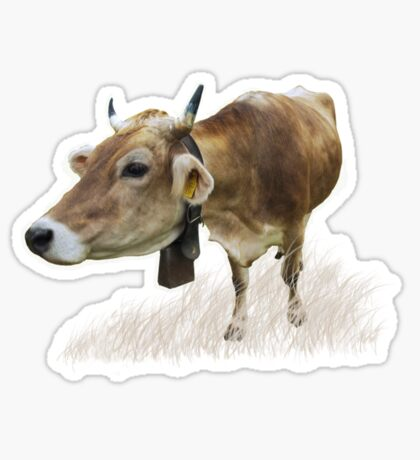 Milk cow in the field VRS2 Sticker