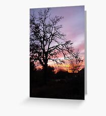 Sun Sets in Suburbia  Greeting Card