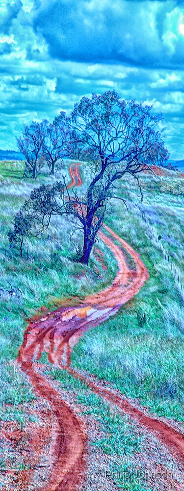The Short And Winding Road  (Vertical Pano)- Cootamundra NSW - The HDR Experience by Philip Johnson