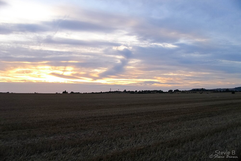 A Wheatfield Sunset by Stevie B