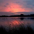 Sunrise Paradise by ienemien